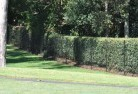 Appin VIC Wire fencing 15